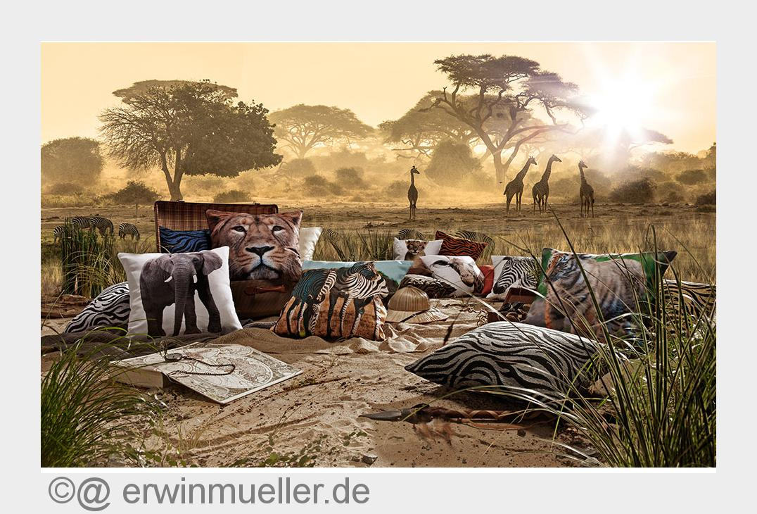 wildlife safari bei erwin m ller firmenpresse. Black Bedroom Furniture Sets. Home Design Ideas