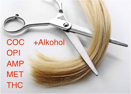 Haartest - Alkohol und Drogen in den Haaren nachweisen