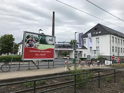Faszination Heimtierwelt 2018 – präsentiert von zookauf: Düsseldorfer Heimtiermesse geht in die zweite Runde