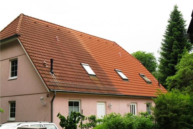 mit der biologische dachreinigung zum neu aussehenden dach. Black Bedroom Furniture Sets. Home Design Ideas